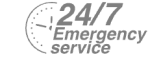 24/7 Emergency Service Pest Control in Battersea, SW11 . Call Now! 020 8166 9746